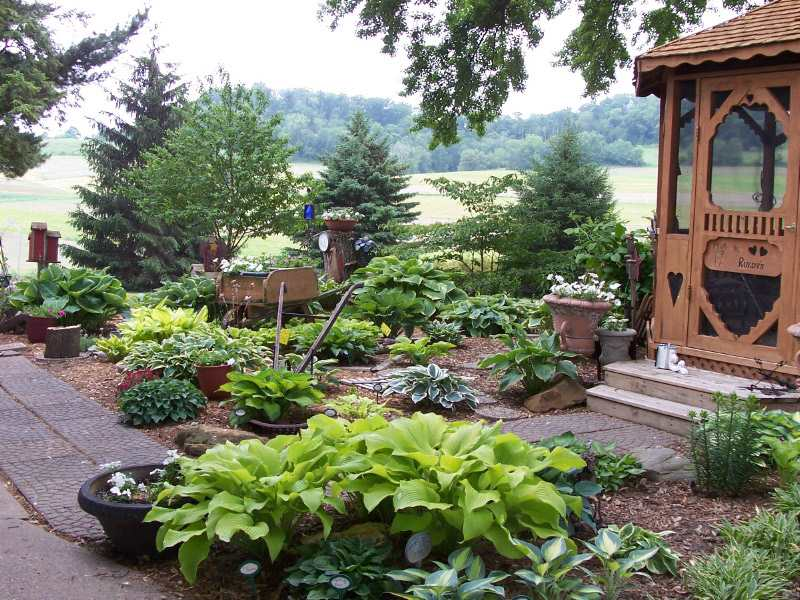 Design Ideas for Hosta Gardens Favorite Perennials